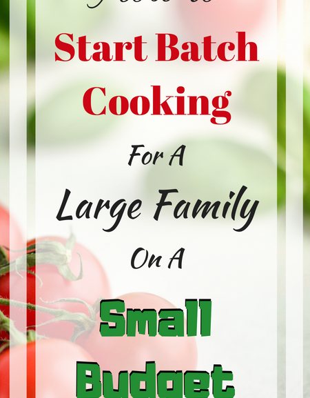 How to start batch cooking for a large family on a small budget