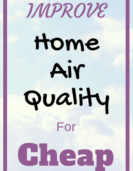 How to improve home air quality for cheap (Easy Tips!)